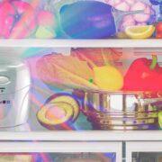 2 – vida-10-ozono-fridge-02